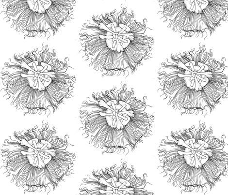 passionfruit flower large fabric by annemclean on Spoonflower - custom fabric