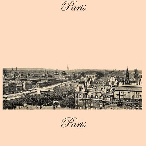 Rrrrparis_the_city_shop_preview