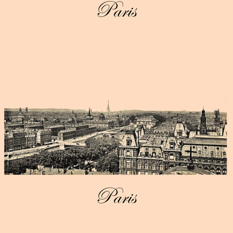 Paris, the city in Creamsicle fabric by karenharveycox on Spoonflower - custom fabric