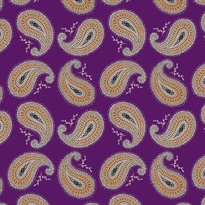 Orange and Purple Paisley