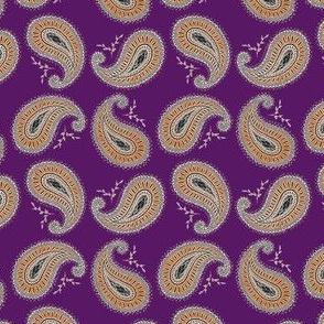 Orange and Purple Paisley