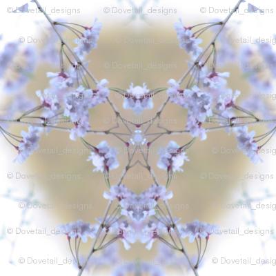 Ali's Flowers 4