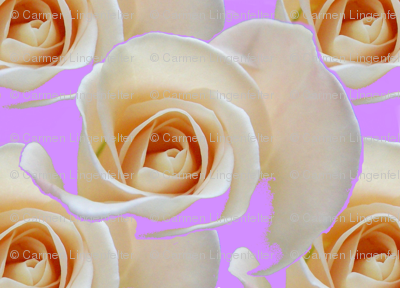 RoseOnLavenderEllipse_Cloned-ed