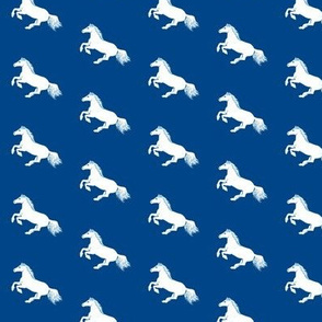 Blue and White Pony