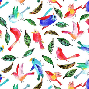 amour d'oiseau sans nuage