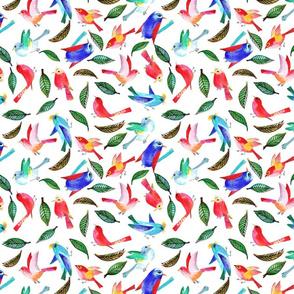 amour d'oiseau sans nuage L