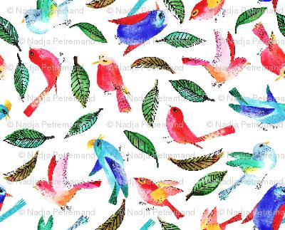 amour d'oiseau sans nuage S