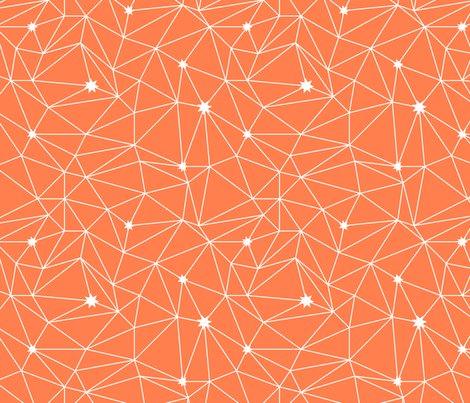 Rrconstelations_orange_shop_preview