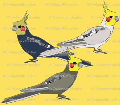 Cockatiels - Yellow