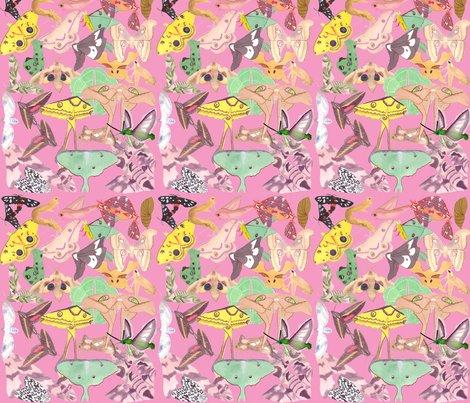 Rrrrrrrrkaufman_fabric_19_shop_preview