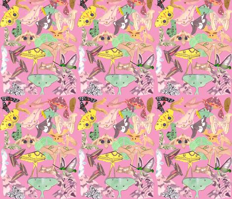 kaufman_fabric_19 fabric by qweenbeee on Spoonflower - custom fabric