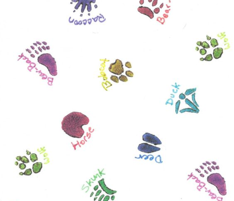 Animal Tracks Color Stamps
