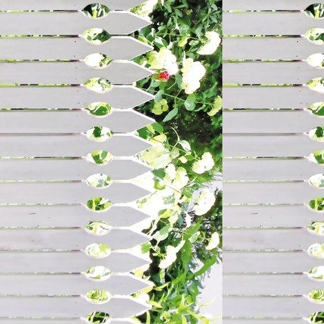 Rrr008_white_picket_rose-b-s_shop_preview