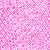 Rrrrfishnetspink_shop_thumb
