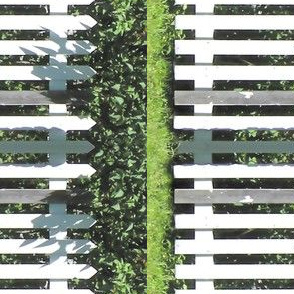 White Picket Fence Border, S
