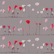 Rrpoppies_pods_grey_shop_thumb