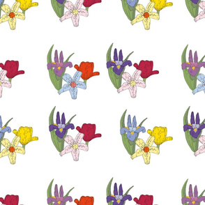 150floralwhite_repeat