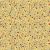 Wild_Daisies