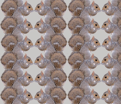 Squirrels fabric by nezumiworld on Spoonflower - custom fabric