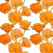 Poppy_pattern_edit_shop_thumb