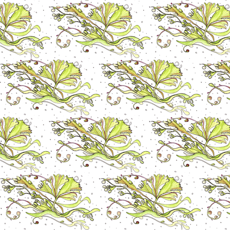 seaweed drifting in white small fabric by annemclean on Spoonflower - custom fabric