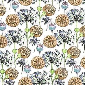 Prairie Pods w/ White Background