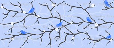 Bluebird Branches