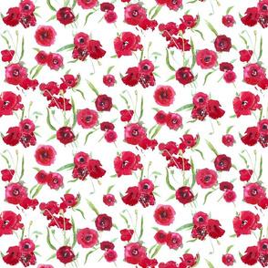poppy fresh smaller scale