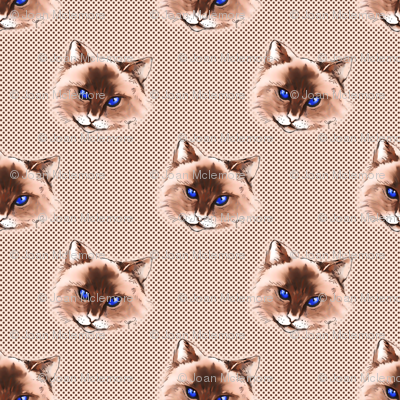 Cat on Polka dot background