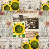 Rrritalian_sunflower_roma_postcard_shop_thumb