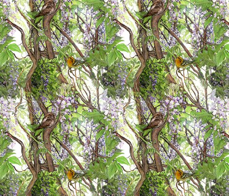 1144341_rwisteria-warbler3_shop_preview