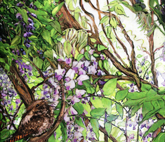 Rwisteria-warbler2_comment_509987_thumb