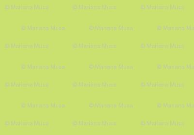 Spring Goldenrod