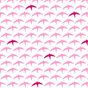 spyre (swift) pink/crimson