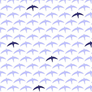 spyre (swift) lilac/blue