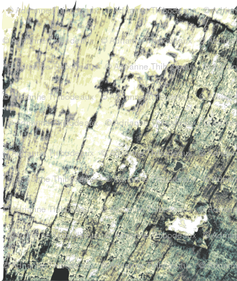WOOD_TEXTURE_SWATCH
