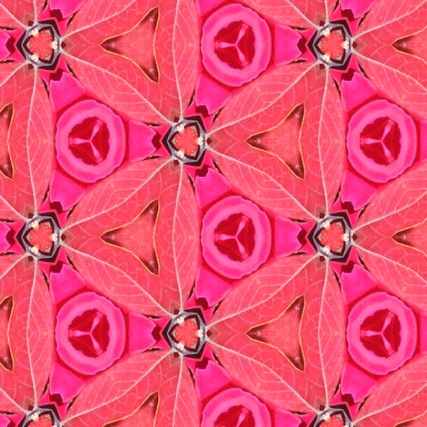 Rrrose_triangles_4714_resized_shop_preview