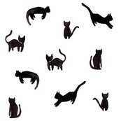 Rcatssmall_shop_thumb