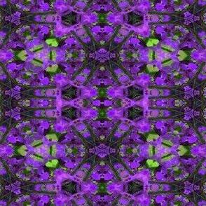 A kaleidoscope of purple flowers