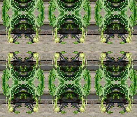 Kohlrabi pattern fabric by gwen_charles on Spoonflower - custom fabric