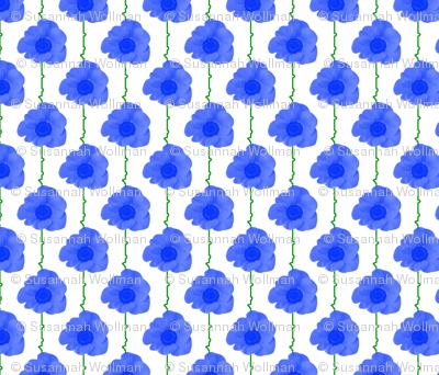 blue_poppies