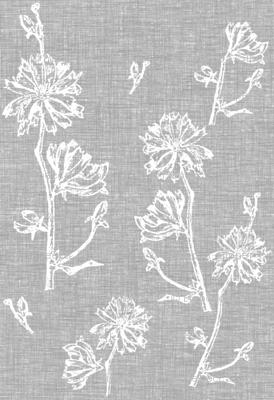 Chicory Fresh Vintage Grey