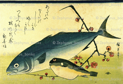 Inada & Fugu (Yellowtail and Puffer or Blowfish) with plum blosoms - Hiroshige's Colorful Japanese Fish Print