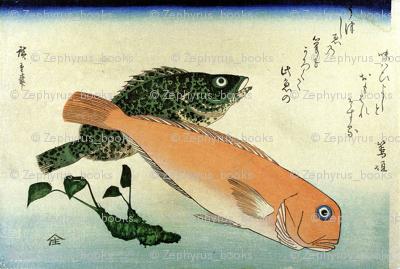 Oomon-hata & Shiro-amadai (Cod and White Horsehead)  - Hiroshige's Colorful Japanese Fish Print