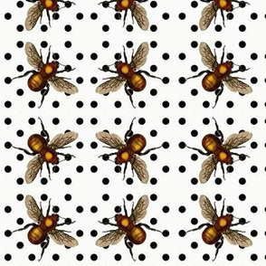 black dots with golden bee