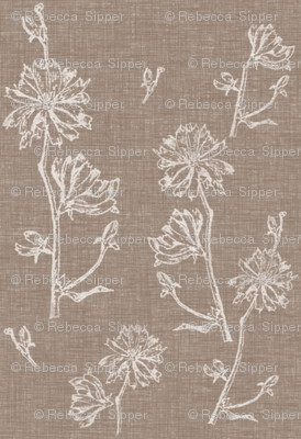Chicory in Vintage Brown