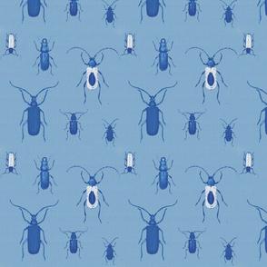 Dark Blue Bugs a lot
