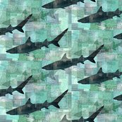 Rrshark_collage_2_shop_thumb