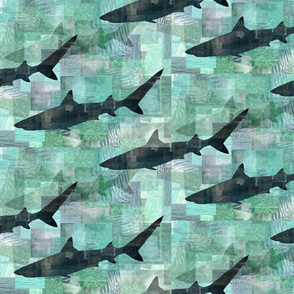 SHARK_COLLAGE_2