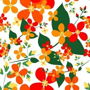 Oranges_Dogwood
